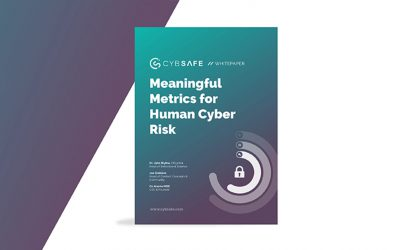 Meaningful Metrics for Human Cyber Risk