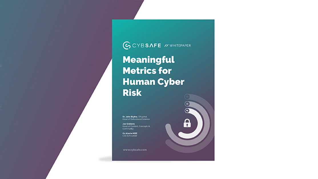 Meaningful Metrics for Human Cyber Risk image