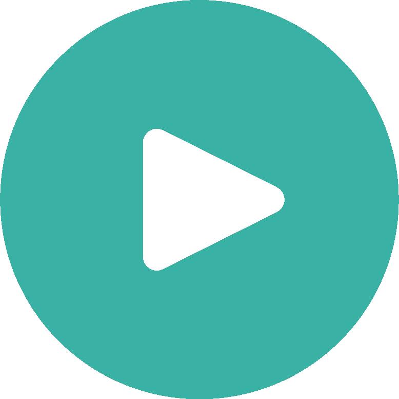 video asset